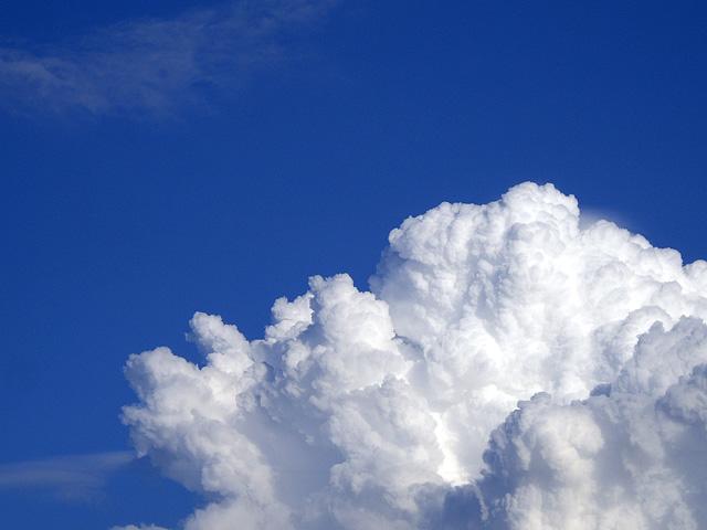 夏の雲の形