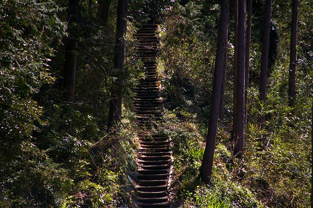 山を登る階段
