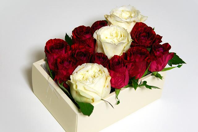 白と赤のバラ