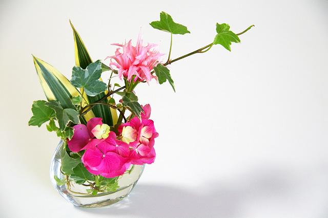 ピンクの花々とアイビー