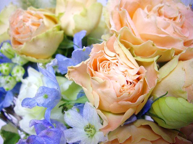 祝福の花の写真素材 フリー