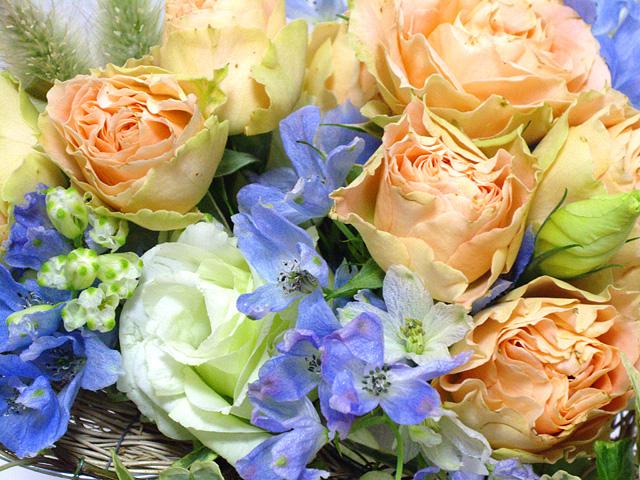 祝福の花の無料写真素材