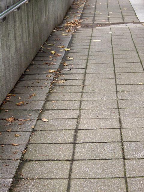 道の隅っこの落ち葉の写真素材 フリー