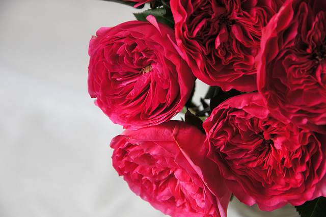 バロネッセのバラの花束