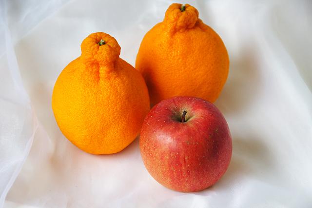 デコポンと林檎の写真素材 フリー