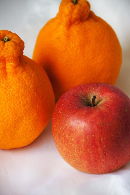 デコポンと林檎の無料写真素材