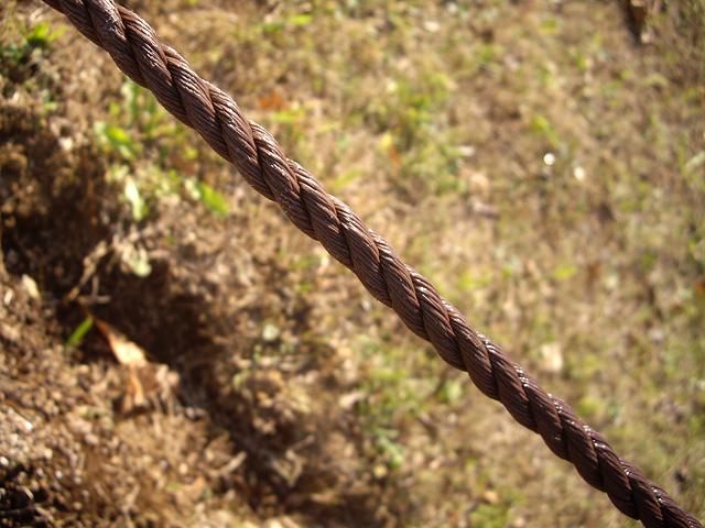 縄の写真素材 フリー