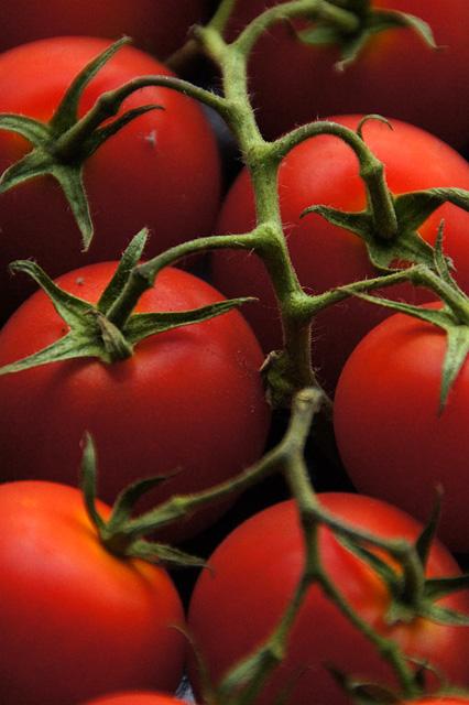 房なりのトマト