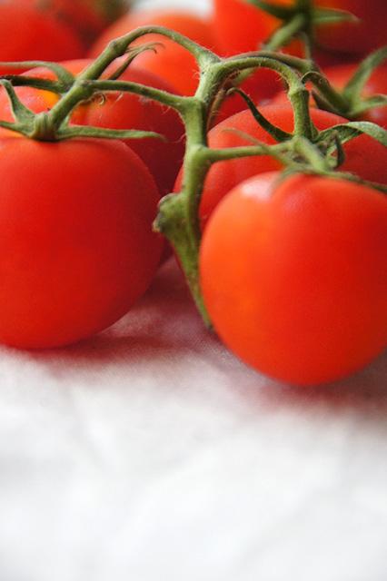 Tomatoの写真素材 フリー