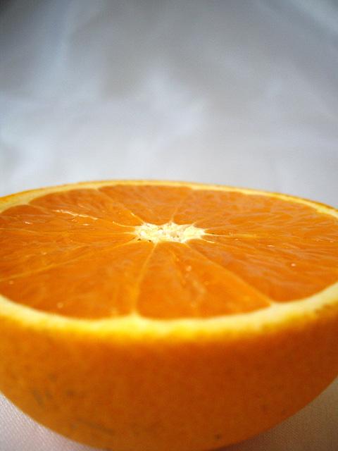 オレンジの無料写真素材