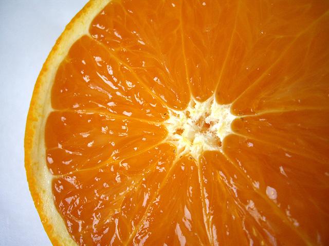 オレンジの断面の無料写真素材