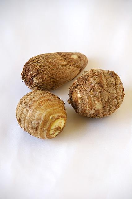 サトイモの無料写真素材