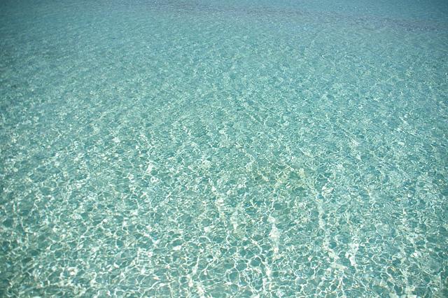 キラキラした海面