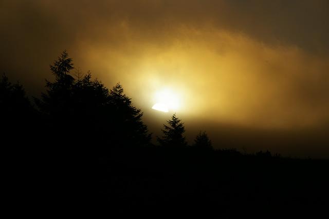 朝靄の中の太陽