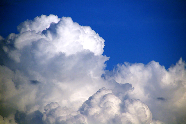夏の空の写真素材 フリー