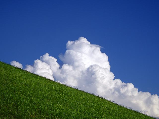 草原と入道雲
