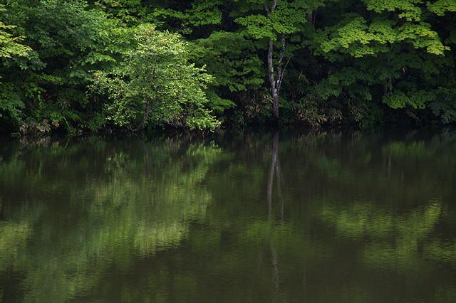 鏡のような水面の無料写真素材