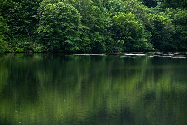 鏡のような水面の写真素材 フリー