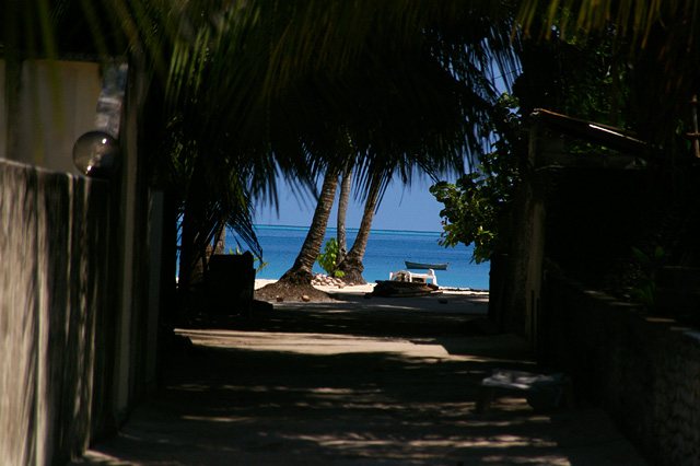 ビーチへ続く道の無料写真素材