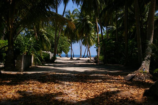 海へ続く砂の道