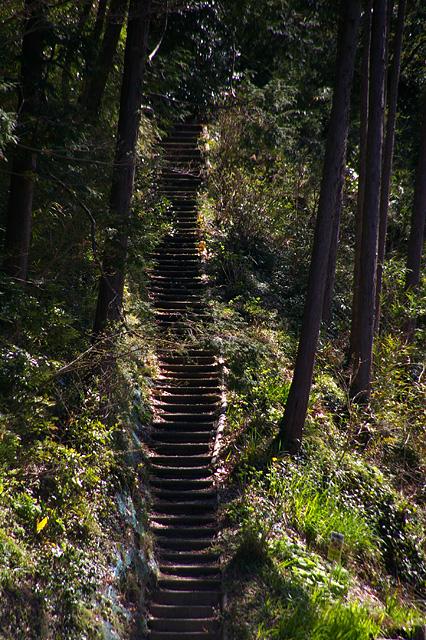 山を登る階段の無料写真素材
