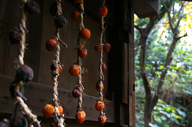干し柿の写真素材 フリー