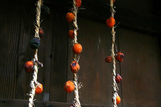 干し柿の無料写真素材
