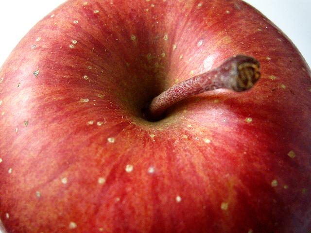 リンゴのフリー写真素材