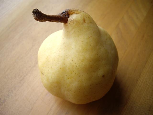 洋梨の写真素材 フリー