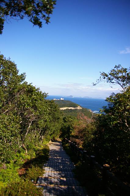 展望台への道