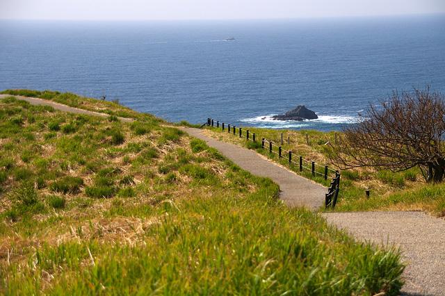海の見える道の写真素材 フリー