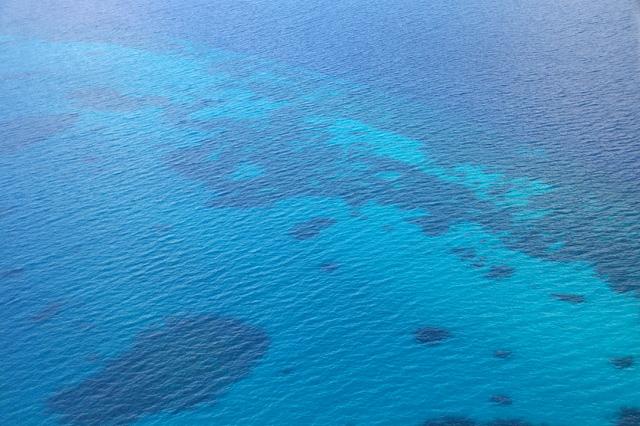 珊瑚の海の写真素材 フリー