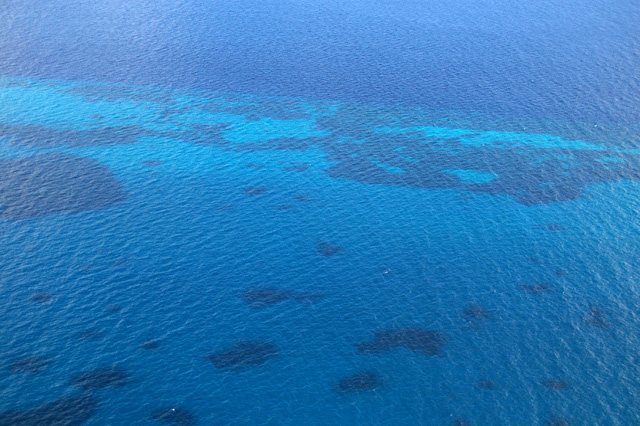 珊瑚の海の無料写真素材