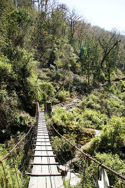 山の中の吊り橋