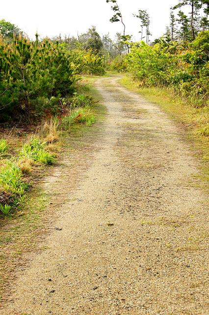 砂利道の無料写真素材