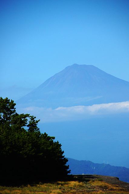 三保の松原から見た富士山の無料写真素材