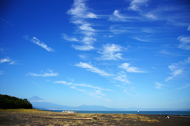 青空と三保の松原