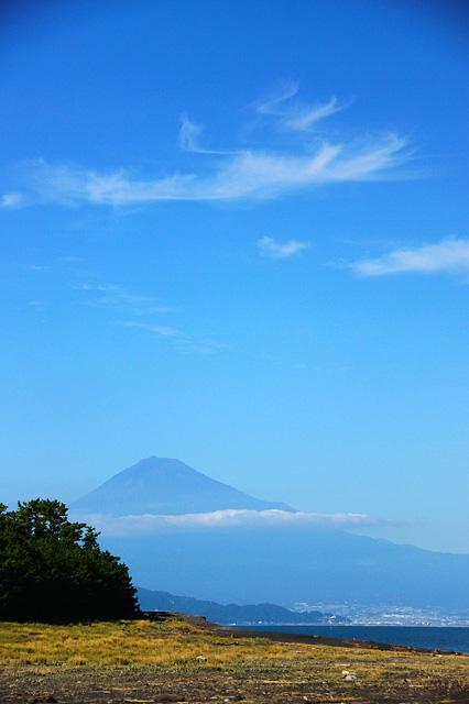 三保の松原から見た富士山の写真素材 フリー