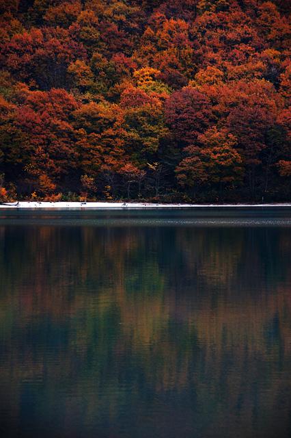紅葉と湖の写真素材 フリー