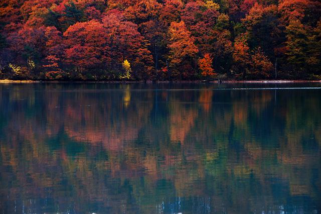 水面に映る紅葉した森の写真素材 フリー