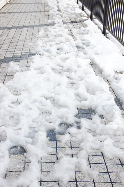 溶けてぐちゃぐちゃになった雪