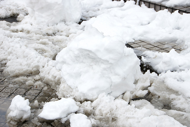 雪ダルマの写真素材 フリー