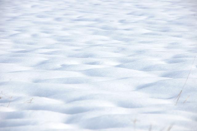 雪原の写真素材 フリー