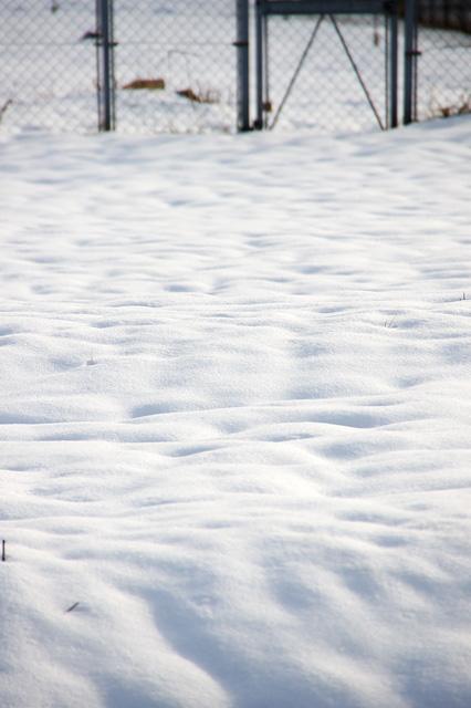 雪原の無料写真素材