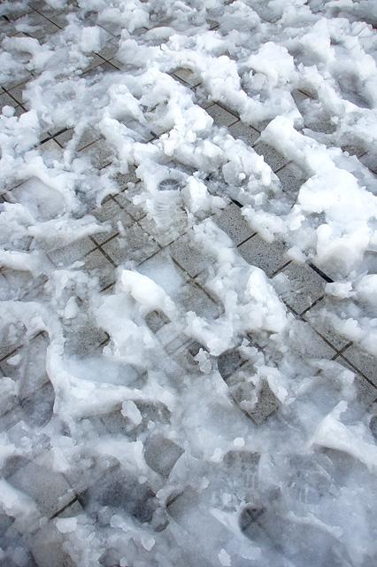 雪の上の足跡の無料写真素材