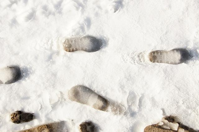 雪の上の足跡の写真素材 無料