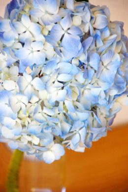 ガラスの花瓶に入れた紫陽花