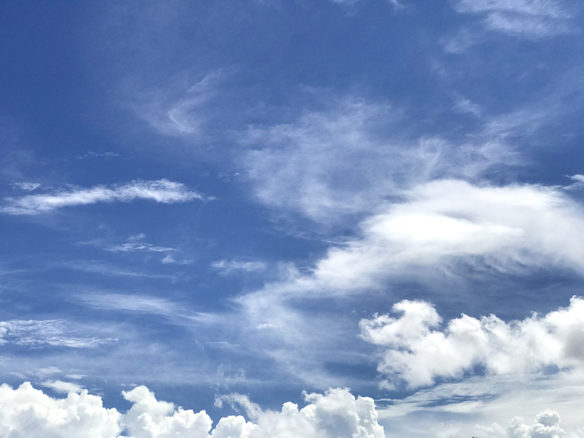 青空に浮かぶ雲のフリー素材