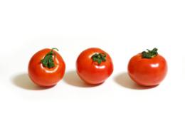 3つのトマトのフリー画像素材
