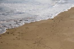 波打ち際の無料画像素材
